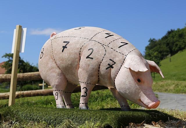 pig-1805416_640